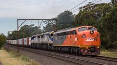"2016-04-29 SSR S302-VL354-VL353 Springwood 1845 (Dean ""O305"" Jones) Tags: railroad blue mountains west au main australia line southern newsouthwales ssr 1845 springwood shorthaul cfcla s302 vl354 vl353"