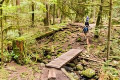Little bridge (Bob_2006) Tags: hike westvancouver wanderung cypressfalls