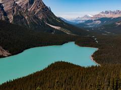 Peyto Lake (Steve AM) Tags: peytolake peyto lake banffnationalpark banffnationalparkalbertacanada albertacanada canada canadianrockies rockies canadian rockymountains moosetour summer2013 northamerica