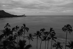 _HDA3920_181981.jpg (There is always more mystery) Tags: beach hawaii hotel waikiki oahu diamondhead royalhawaiian