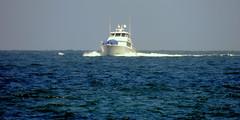 Through The Vast Sea (Khaled M. K. HEGAZY) Tags: blue sea white nature water alexandria closeup boat nikon mediterranean outdoor egypt coolpix   p520