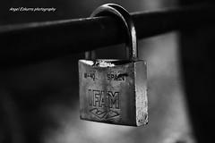IFAM (Angel Ezkurra photography) Tags: bw black sw barandilla oxidado candado candados ifam blancoinegro sprintifam