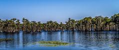 Naples Pier-13.jpg (kenanderson1) Tags: bankslake stateroute122lakelandgeorgiaunitedstates