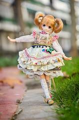 Dreaming awake (Alix Real) Tags: anime outfit doll dolls princess little no dal pure maid kuni neemo chisa otogi azone pureneemo dotori