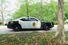 Baldwin PD_P1080618 (pluto665) Tags: car squad cruiser copcar