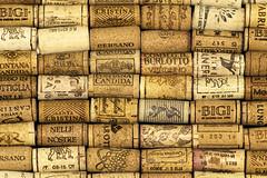 DSC_3264 (littleirons) Tags: cork tappi sughero