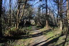 Let's go hiking! (rozoneill) Tags: hiking crescentcity prairiecreekstatepark klamathriver redwoodsnationalpark yurok falseklamathrock californiacoasttrail