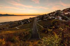 Infinity tracks (Jamani Caillet) Tags: autumn sunset alps fall train alpes automne golden schweiz switzerland vineyard suisse swiss sbb hour vignes ffs swissalps lavaux cff romandie grandvaux
