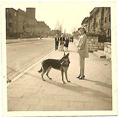 (scmrsgena) Tags: germany vintage germanshepard pencilskirt blackandwhite streetphotography sepia historic warwife abroad 1940s postwar armywife