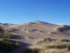 Balmedie Beach Sand Dunes, Balmedie, Aberdeenshire, Jan 2016 (allanmaciver) Tags: beach wonderful climb coast scotland amazing wind dunes footprints east special footsteps miles height balmedie allanmaciver