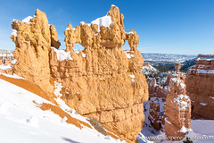 Bryce Canyon-8.jpg (gaillard.galopere) Tags: voyage travel trees winter orange usa snow nature stone montagne wonderful utah nationalpark outdoor roadtrip explore backpacking neige brycecanyon extrieur calme hoodoos discover 2016 exterieur decouverte visitutah exploringtheglobe exploreusa wowutah