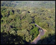 Winding road (Indianature st2i) Tags: india december tea tamilnadu westernghats teaestate 2016 2015 valparai indianature anamalais indiragandhiwildlifesanctuary anamallais anamalaitigerreserve