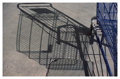 canario / canary (Leonardo... a veces) Tags: street shadow film jaula calle sombra shoppingtrolley canary analogue canario carrodecompras