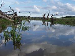 Barragem de Alvito (Fernando Moital) Tags: barragem alvito canoagem cuin oriola