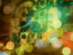 For the Love of Nature (soniaadammurray - On & Off) Tags: trees abstract green love nature beauty birds manipulated countryside spring experimental singing bokeh hills quotes shade digitalphotography helenkeller charleslamb janeaustin spongygrass pineneedses