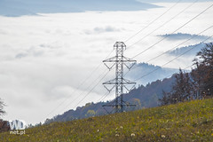 Power line in mountains (WDnet) Tags: blue trees sky mountain mountains tree green tower industry nature grass lines norway electric metal landscape grid high construction energy industrial technology power steel meadow engineering structure line pylon equipment electricity environment powerline electrical transmission supply voltage d5300
