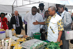 FARA Executive Director visits IITA (IITA Image Library) Tags: cassava fara iita manihotesculenta cassavaproducts