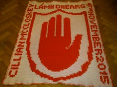 Lamh Dhearg GAA blanket for Cillian (dochol) Tags: chart cute wool name crochet craft graph yarn blanket afghan alphabet manta babyblanket personalised croche crochethooks gaafootball lamhdhearg haakenwert
