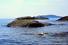 TURTLE ISLAND LAKE SUPERIOR ONTARIO NEAR WAWA ONTARIO (alexanderrmarkovic) Tags: lakesuperior turtleisland