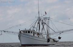 Shrimpboat1 (jb5860) Tags: artisticphotos bestartistic jb5860