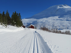 Mile after mile (Mrs.Snowman) Tags: sun snow norway skiing stordal overøye