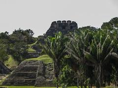"""Xunantunich: vue sur le Castillo depuis le Shifting Palace <a style=""""margin-left:10px; font-size:0.8em;"""" href=""""http://www.flickr.com/photos/127723101@N04/25597786783/"""" target=""""_blank"""">@flickr</a>"""