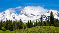 Teton mountain range (Paladin27) Tags: blue trees sky mountain snow mountains green grass wyoming grandtetons grandteton grandtetonnationalpark