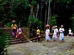 To the ceremony in the temple . (Franc Le Blanc .) Tags: people bali temple lumix religion panasonic hindu batukaru
