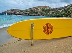 Beach Patrol (madzack385) Tags: beach yellow hawaii bay pacific oahu hanaumabay hanauma