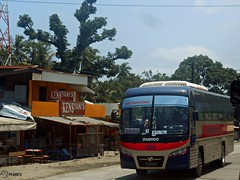 Davao Metro Shuttle 502 (Monkey D. Luffy 2) Tags: road city bus public del photography photo coach nikon philippines transport motors vehicles cruz transportation coolpix daewoo vehicle sur santarosa society davao coaches sta philippine enthusiasts cityliner tagum bf106 philbes