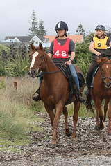 IMG_EOS 7D Mark II201604039695 (David F-I) Tags: horse equestrian horseback horseriding trailriding trailride ctr tehapua watrc wellingtonareatrailridingclub competitivetrailriding sporthorse equestriansport competitivetrailride april2016 tehapua2016 tehapuaapril2016 watrctehapuaapril2016