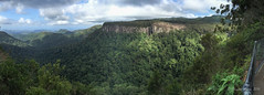 Canyon Lookout panorama (NettyA) Tags: panorama rainforest pano australia lookout bushwalking qld queensland bushwalk springbrook goldcoasthinterland 2016 springbrooknationalpark scenicrim seqld warriecircuit canyonlookout scbwc appleiphone6