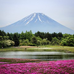 Japan #fujisan #montfuji #mountfuji #sacred #igersjapan... (djulinho) Tags: japan mountfuji sacred fujisan unescoworldheritage worldheritage nationalsymbol montfuji voyageursdumonde igersjapan uploaded:by=flickstagram instagramjapan instagram:photo=99036544407319496716134992 instagram:venuename=mountfuji instagram:venue=230075348