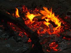 Bonfire at May Dip, 2016 (Dunnock_D) Tags: wood uk beach closeup fire scotland sticks sand unitedkingdom fife britain flames burning flame bonfire standrews embers eastsands maydip