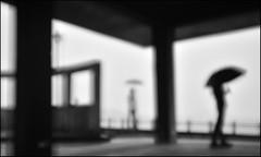 F_DSC3957-1-BW-Nikon D800E-Nikkor 28-300mm-May Lee- (May-margy) Tags: portrait bw blur silhouette umbrella seaside bokeh doubleexposure taiwan  raining              povilion repofchina  humaningeometry newtaipeicity maymargy nikkor28300mm nikond800e maylee  mylensandmyimagination streetviewphotographytaiwan  naturalcoincidencethrumylens  linesformandlightandshadows  fdsc39571bw