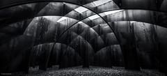 C-mine Genk - Labyrint (David Jonck) Tags: davidjonck d750 cmine ts belgi 2016 belgique genk doolhof limburgslandschap limburg flanders belgium labyrinth tiltshift 24mm mijn labyrint pce vlaanderen maze be