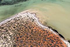Shark Bay  - 5471