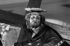 Savona - Processione del Venerd Santo (giansacca) Tags: savona processionedelvenerdsanto processione venerdsanto pasqua easter ges casse cassa jesus statua statue croce croix cross arte art jesuschrist