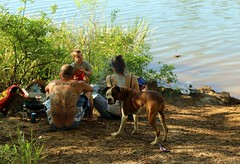 Dogs&Owners    (komissarov_a) Tags: ocean life friends dog pets love water animals training canon fun photo sand husky play friendship shepherd streetphotography rottweiler terrier management together precious boxer doberman mansbestfriend rgb relationships protection saintbernard investment partnership defenders pittbull pinscher alike noble  nickname owners dogsowners breeds         dolmation       5dm3  komissarova