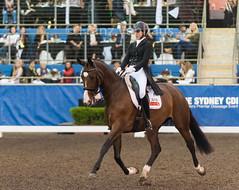 160409_2016_SydneyCDI_GPFS_4590.jpg (FranzVenhaus) Tags: horses test sydney australia nsw judge newsouthwales aus equestrian riders dressage siec
