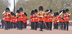 band of the welsh guards /22/04/2016/ (philipbisset275) Tags: unitedkingdom centrallondon englandgreatbritain bandofthewelshguards themallcityofwestminster 22042016