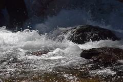 River Foam (Catgirrrl) Tags: water oregon hike april mounthood 2016 tamanawasfalls