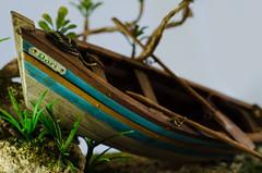 Fotografia de Produto: Escultura - Djair Duarte (Lara Avlis) Tags: sculpture de ensaio boat pessoa nikon barco ship photoshoot details pb escultura lara fotografia product acessories joao paraiba fotgrafa produto escultor avlis fotogrfa laraavlis