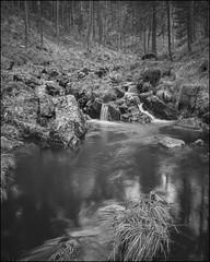 . (OverdeaR [donkey's talking monkey's nodding]) Tags: bw mountain nature zeiss creek forest landscape woods long exposure fe cb a7 3528 planina divčibare maljen