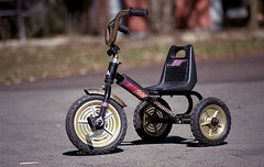 And she named it....Golden Wheels (toulouse goose) Tags: film 35mm canon eos golden spring fuji zoom tricycle wheels driveway 200 epson tamron ld sweetride elan7 c41 homedeveloped v500 af70300mm
