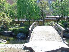 #7959 shrine garden (Nemo's great uncle) Tags: garden  yushima  tky   bunkyku yushimatenji