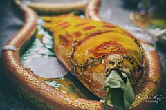 Fish (Ranita Roy Photography) Tags: wedding india fish gold culture gift elements tradition turmeric bengal bengali