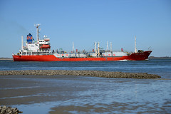 Lady Martine (larry_antwerp) Tags: netherlands ship nederland vessel schelde tanker  schip  terneuzen   ultragas    unigas    starmanagement 9172131 ladymartine