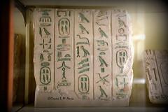 The Petrie Museum of Egyptian Archaeology Artifacts (Assyria, Babylon, Akkad, Sumer...) Tags: new old uk london archaeology pyramid memphis egypt kingdom ucl egyptian pharaoh stele marble middle luxor isis giza amenhotep dynasty nefertiti osiris thebes stela akhenaten hieroglyph cartouche petrie amun ramesses abydos middlekingdom oldkingdom amarna upperegypt badari loweregypt romanegypt ptolemaicperiod lateperiod petriemuseum flinderspetrie egyptianarchaeology intermediateperiod