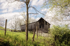 Old Farmstead (Denise @ New Mercies I See) Tags: home nature outdoors spring may westvirginia appalachia 2016 onethousandgifts